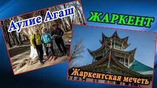 ЖАРКЕНТ: Священное дерево (Аулие Агаш) и Жаркентская мечеть | ZHARKENT, KAZAKHSTAN