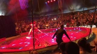 Цирк - Акула Шапито - Аксай ЗКО