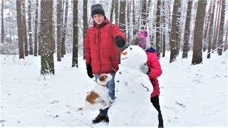 Приколы с котами и Приколы с собаками Смешные Видео с животными 2018