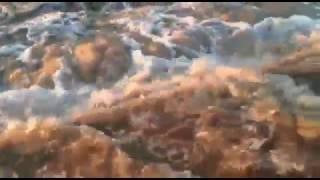 Атбасар - потоп. Апрель 2017. Казахстан
