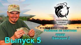 Выпуск 5. Рыбалка на Коммерческом пруду Байсерке 2. Рыбалка в Алматы. Рыбалка в Казахстане.