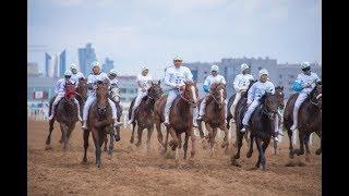 Экспо 2017 Бәйге/ Скачки/ Expo Astana racing baiga/ Байге Астана Казахстан Kazakhstan Қазақстан