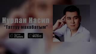 """Нурлан Насип - """"Таттуу махабатым"""" (Премьера песни 2017)"""