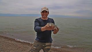Капчагай майcкая рыбалка 2017